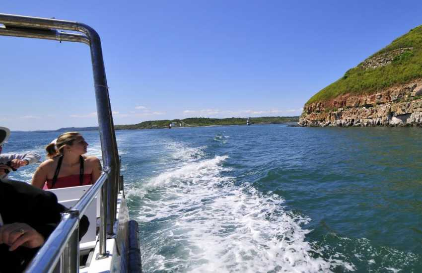 Take a boat trip to Puffin Island from Beaumaris