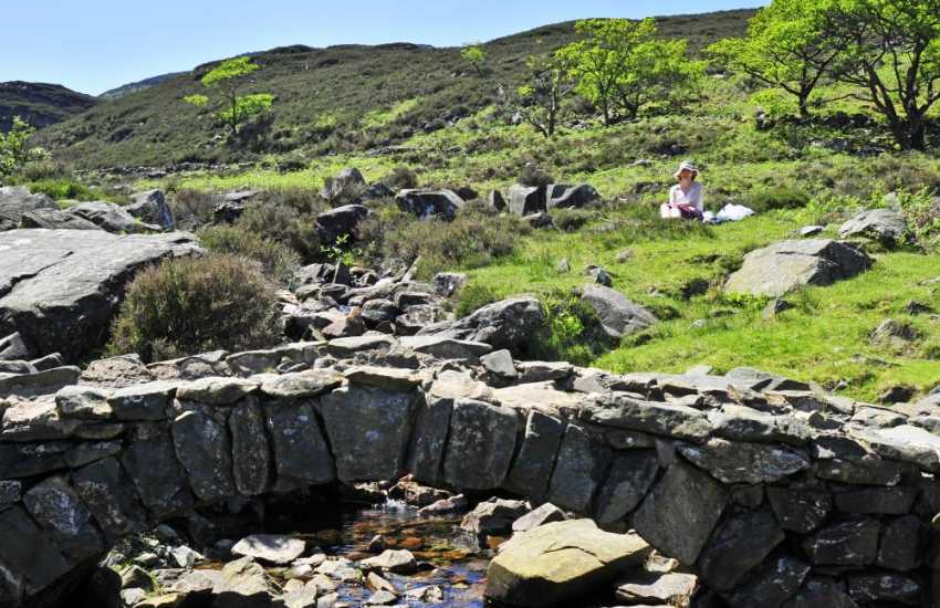 An ideal spot for a picnic - Cwm Bychan and the Roman Steps