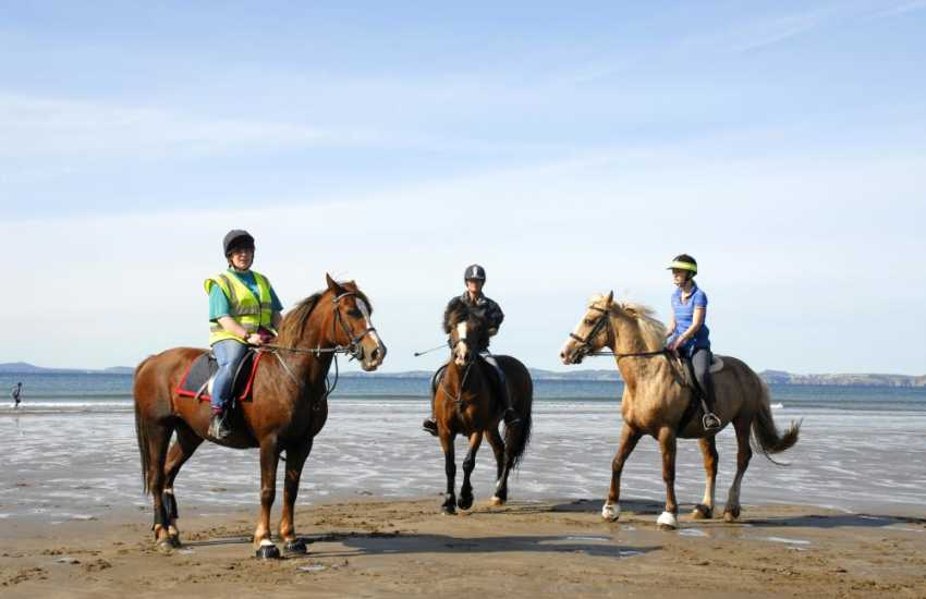 Close by enjoy a quiet hack through ancient woodland or an exhilarating beach ride. You can even 'own a pony' for the day!