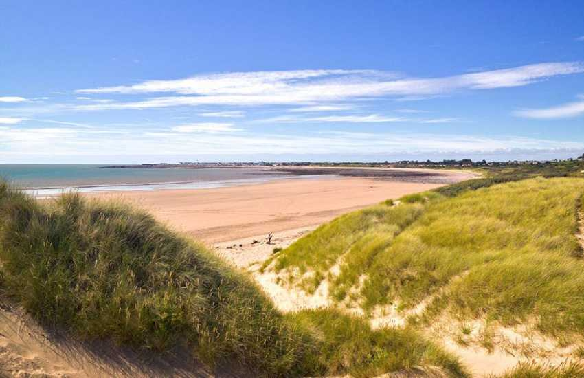 Merthyr Mawr Warren National Nature Reserve, teeming with birdlife, is home to some of the tallest sand dunes in Europe.