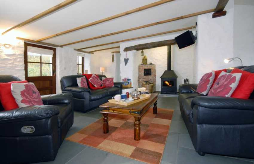 North Pembrokeshire holiday home - sitting room with wood-burning stove, Free-view digital tv/dvd