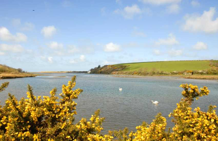 The River Nevern at Newport - a wonderful spot for estuarine bird watching