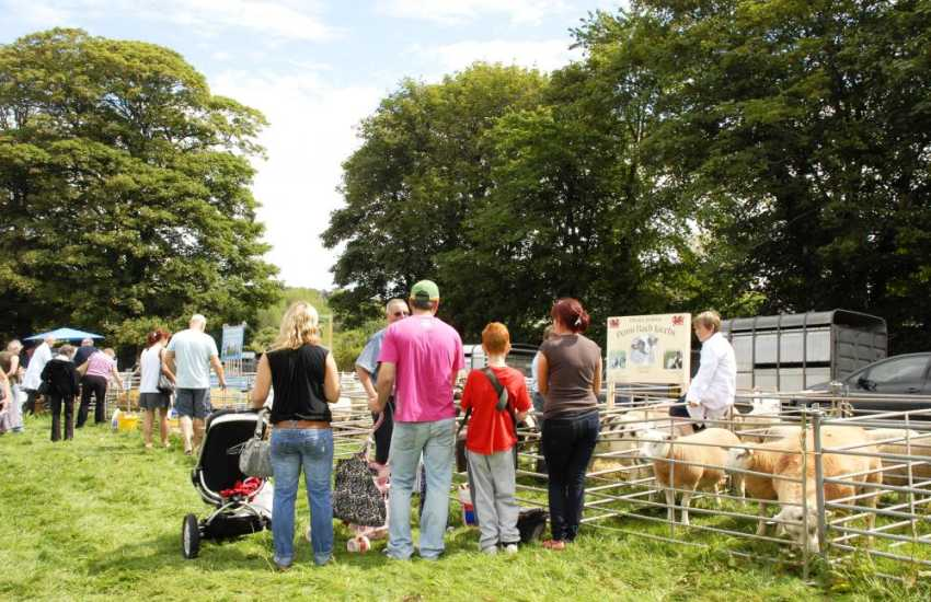 Soak up the atmosphere at a local agricultural show - a day out all the family will enjoy