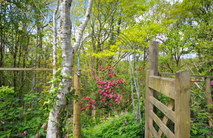 Rural retreat Snowdonia - garden