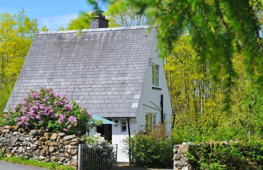 Luxury cottage Snowdonia - ext