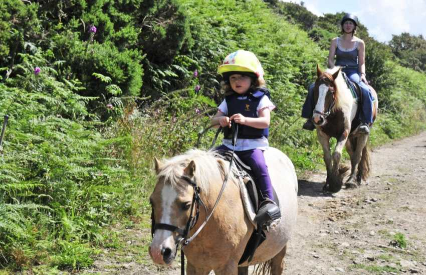 Crosswell Horse Agency offers treks up in the Preselli hills and ancient bridleways plus 'Own a Pony Days' for children
