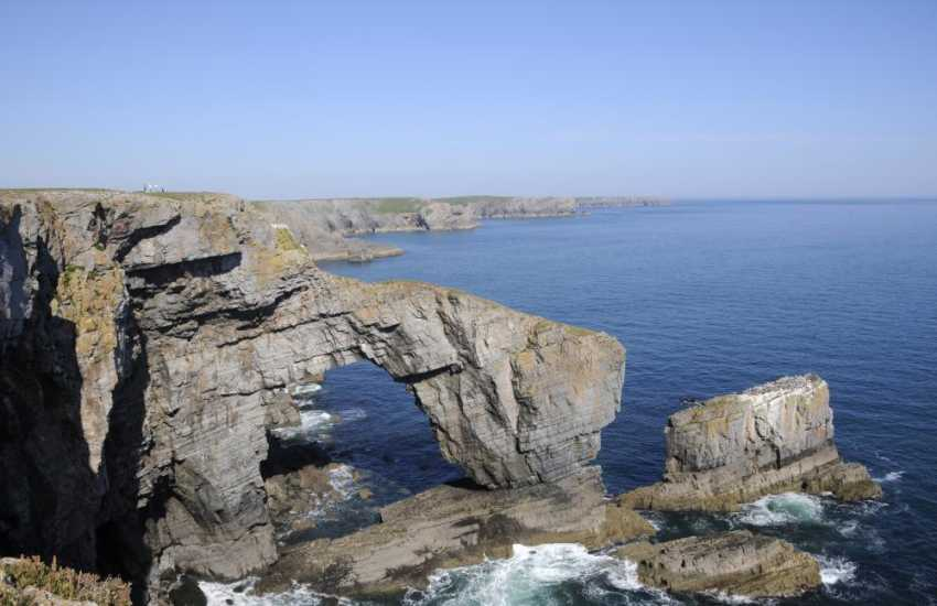Green Bridge of Wales on the Pembrokeshire Coast Path - wonderful cliff top walks filled with birdlife, flora and fauna all year long