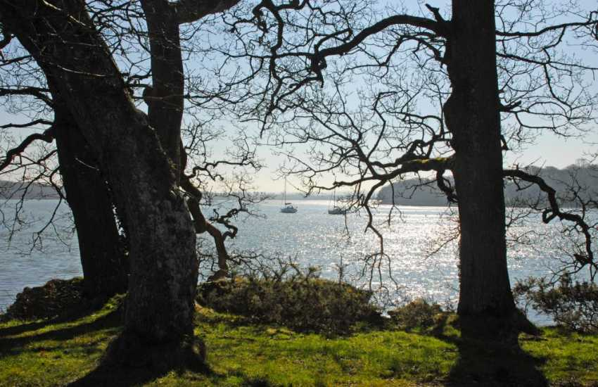 Enjoy the upper reaches of the Cleddau River for superb scenery and tranquil riverside walks
