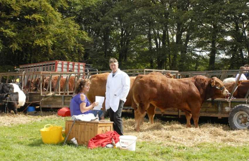 Enjoy a real taste of country activities on a day out to a local summer show
