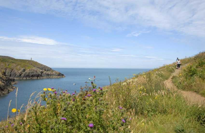 The Pembrokeshire Coast Path is fabulous for cliff top walking, wild flowers and lots of wildlife to be spotted along the way