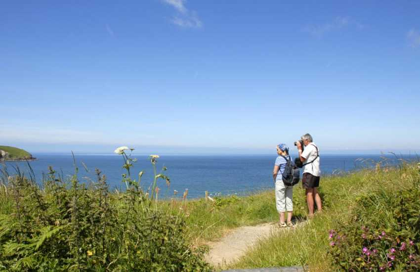 The Pembrokeshire Coast Path - fabulous cliff top walking with all kinds of flora and fauna throughout the year