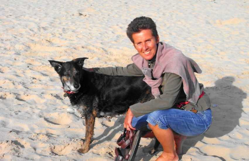 Enjoying the fresh sea air and sandy beaches - Most holiday cottages welcome your dog