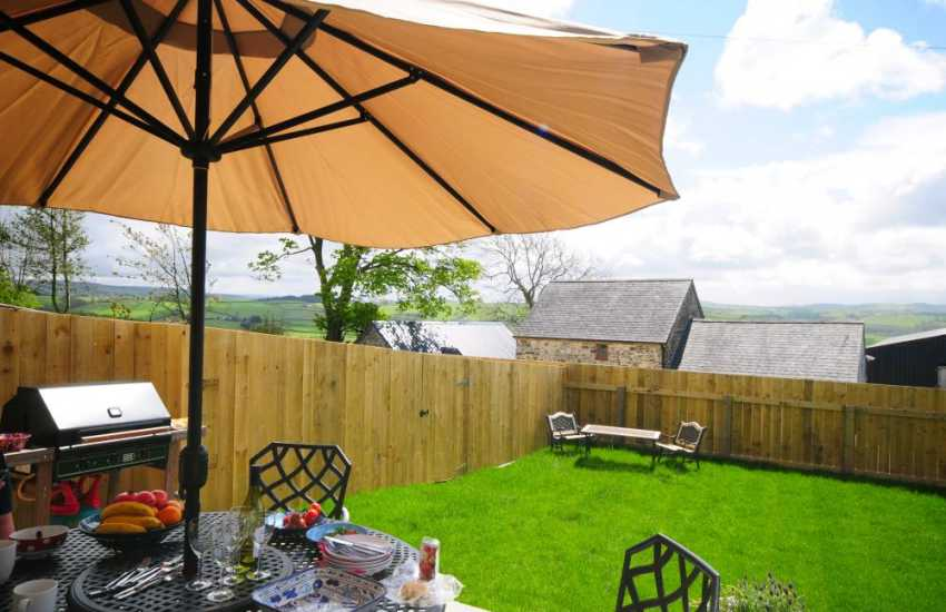 Vale of Rheidol holiday cottage - terrace