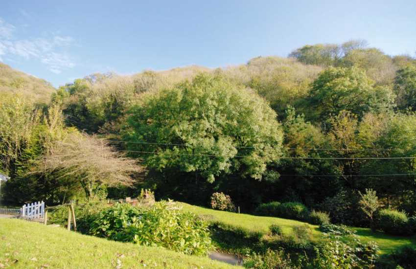 Valley gardens at this idylic cottage south Pembrokeshire