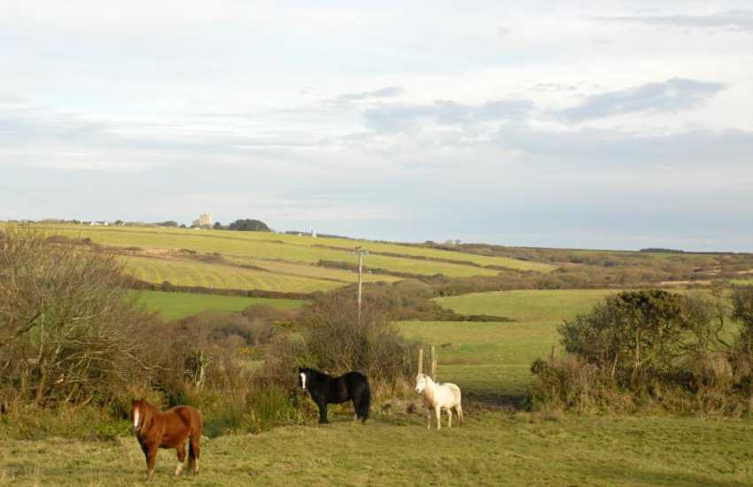 Nolton Haven - family home for holidays with lovely surrounding countryside
