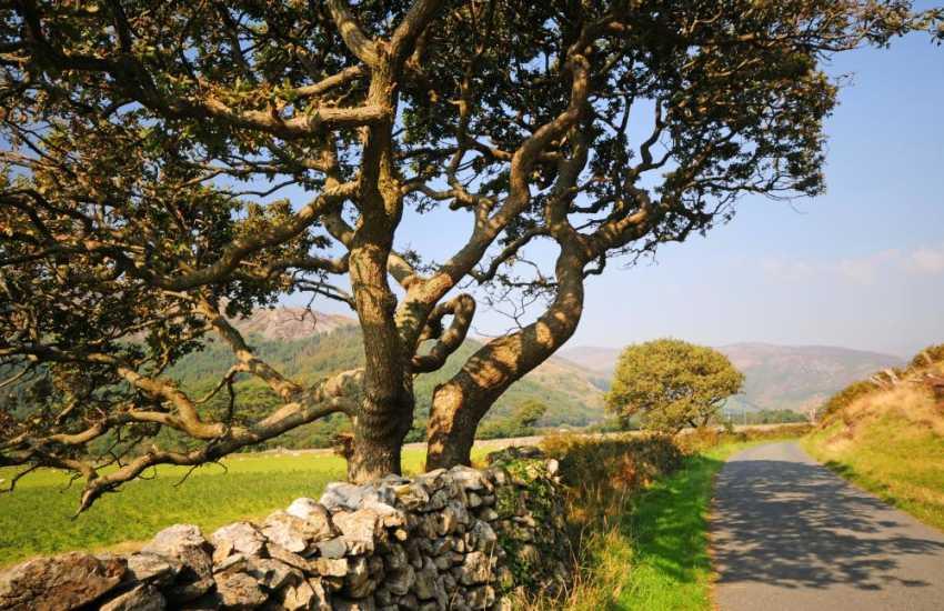 Bird Rock near Tywyn on the Welsh coast