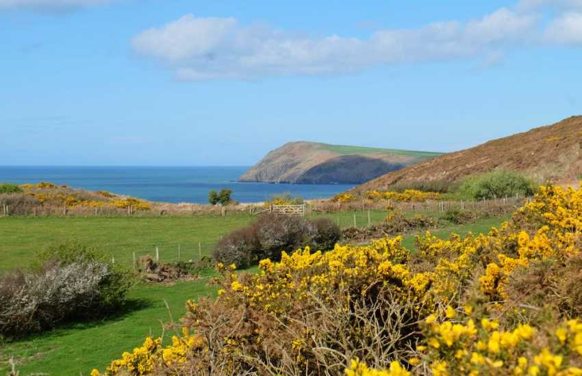 Fishguard holiday cottage by the sea