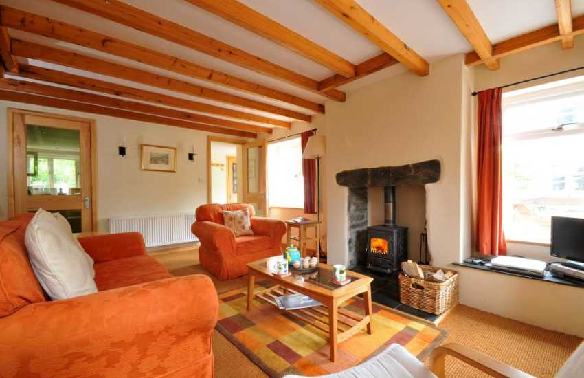 Snowdonia cottage sleeps 4 - lounge