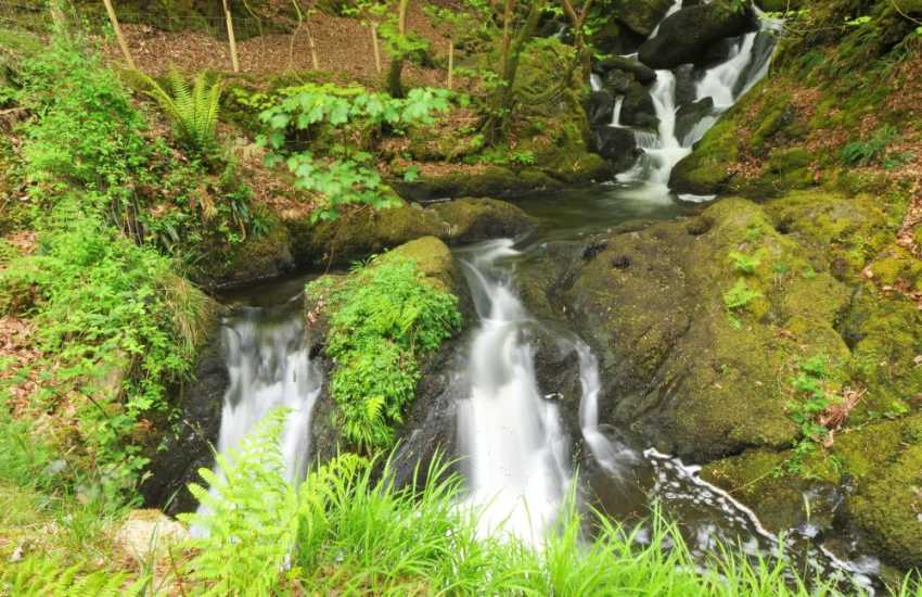 Arthog Falls - a wonderful walk cutting up through the woodlands