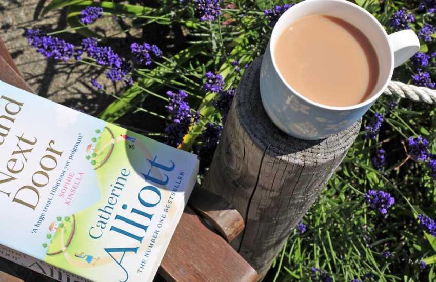 Lleyn Peninsula Luxury holiday cottage - garden