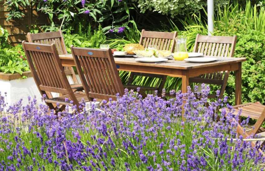 Lleyn Peninsula cottage - garden