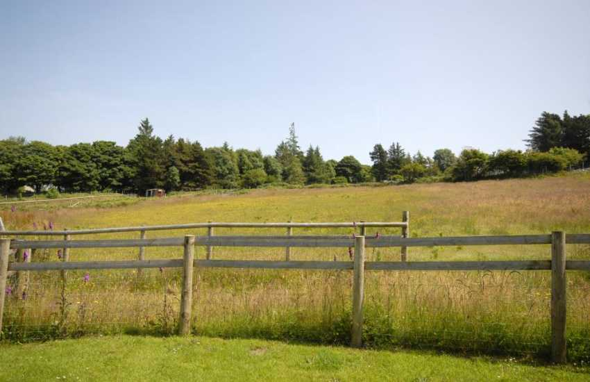 Lovely views up to the mountain over the paddocks from the cottage