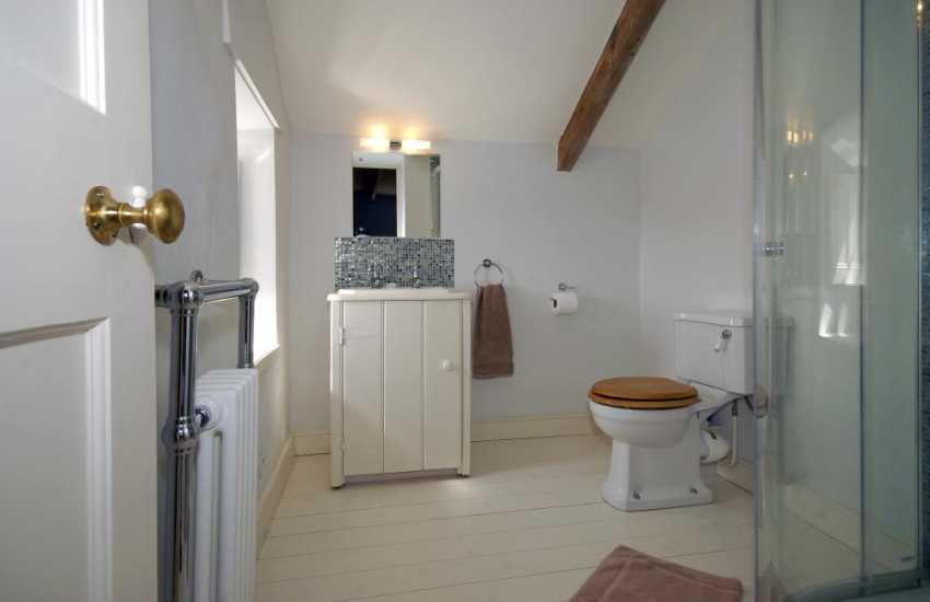 St Davids holiday farmhouse - master en-suite shower