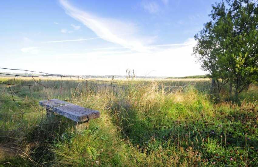 Malltreath Marsh has several walks across the estuary to Newborough Forest