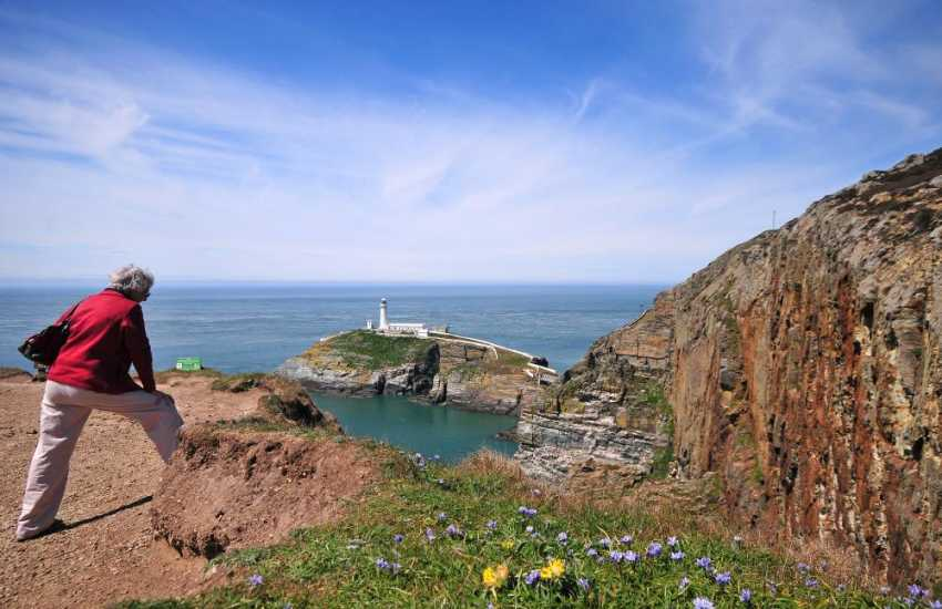South Stack RSPB nature reserve