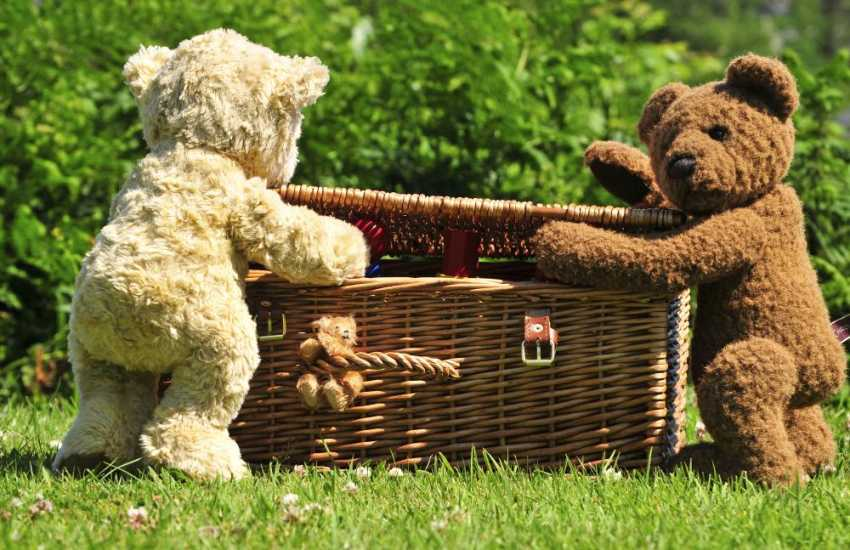 Teddy bears picnic on the lawn