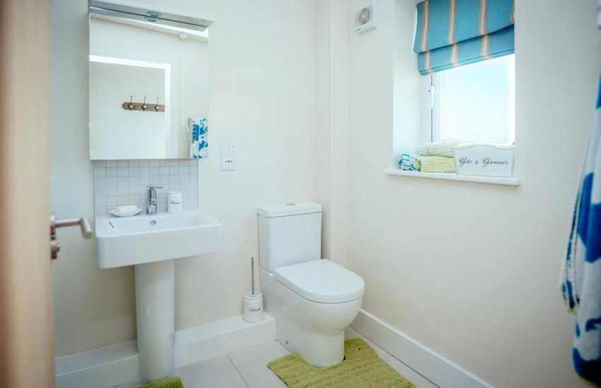 Llansteffan holiday cottage-shower room