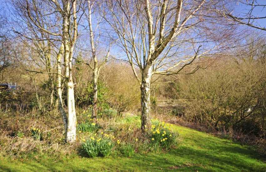 Anglesey coastal cottage - garden