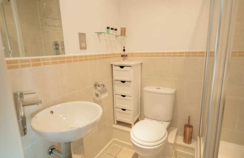 Holiday Swansea marina luxury penthouse apartment-shower room