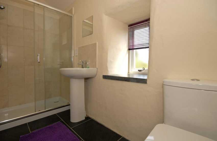 St Davids holiday cottage - Luxury en suite double shower