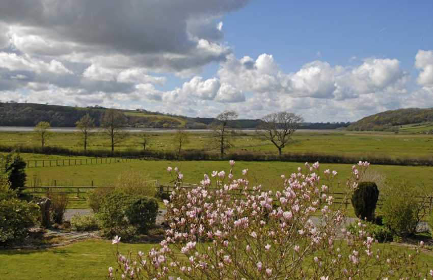 Views over the magnolia tree to the Taf Valley beyond