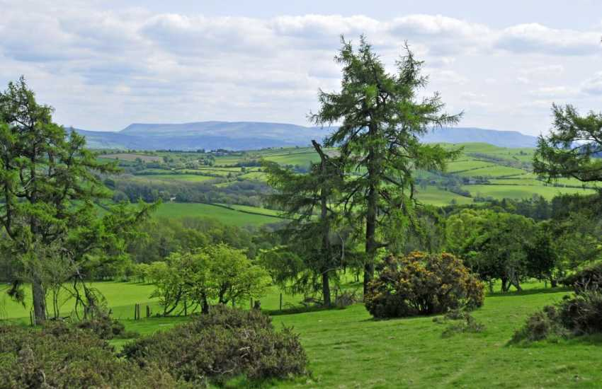 Views of Hay Bluff & Brecon Beacons from Newchurch Common