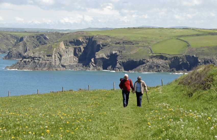 The Pembrokeshire Coast Path - stunning cliff top scenery, flora and fauna throughout the year