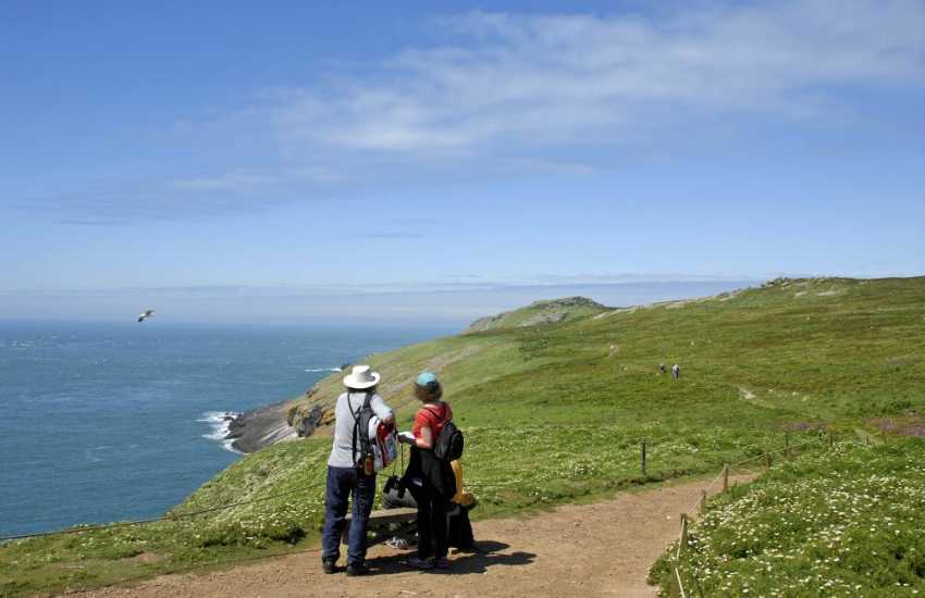 Bird watching on Skomer Island Marine Nature Reserve. Do visit for an island adventure with wonderful wildlife from spring to autumn