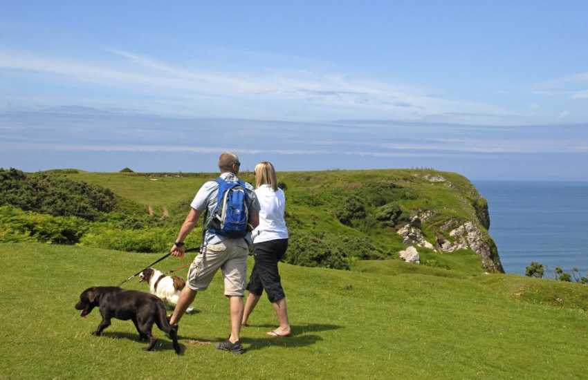Pembrokeshire Coast Path offer fabulous cliff top walking at any time of the year-most Quality Cottages are dog friendly