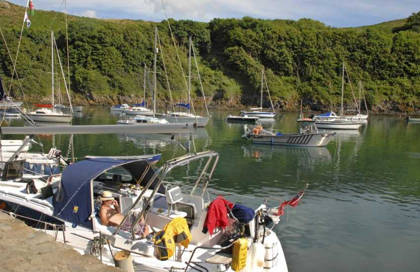 Solva Harbour is home to luxury yachts and boats of all shapes and sizes - a great place to 'chill out'