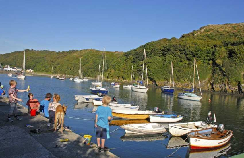Picturesque Solva harbour is a great spot for 'crabbing'