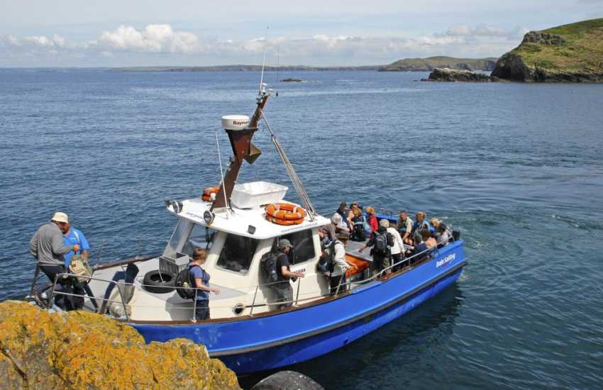 Skomer Island boat trips aboard the 'Dale Princess' take just 20 minutes from Martins Haven