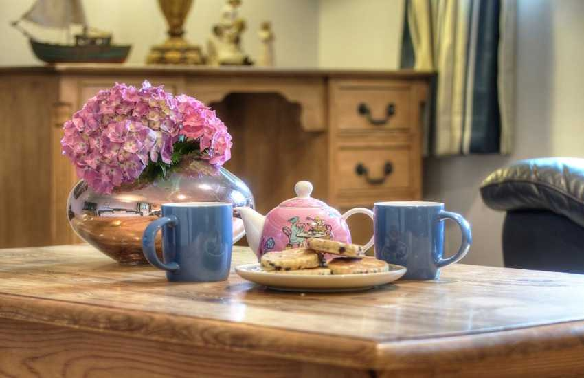 Pet friendly cottage North Wales - cameo