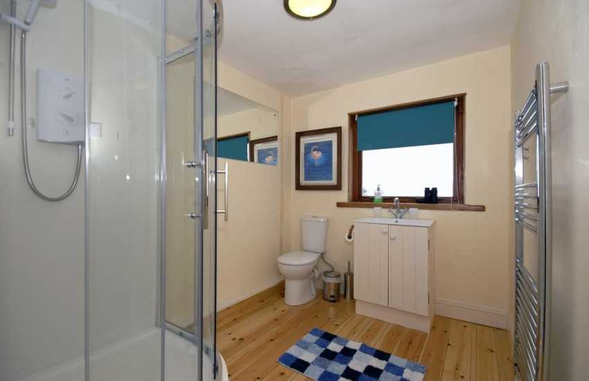 Pembrokeshire coast holiday cottage - first floor shower room