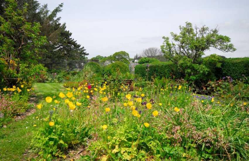 Criccieth holiday cottage garden