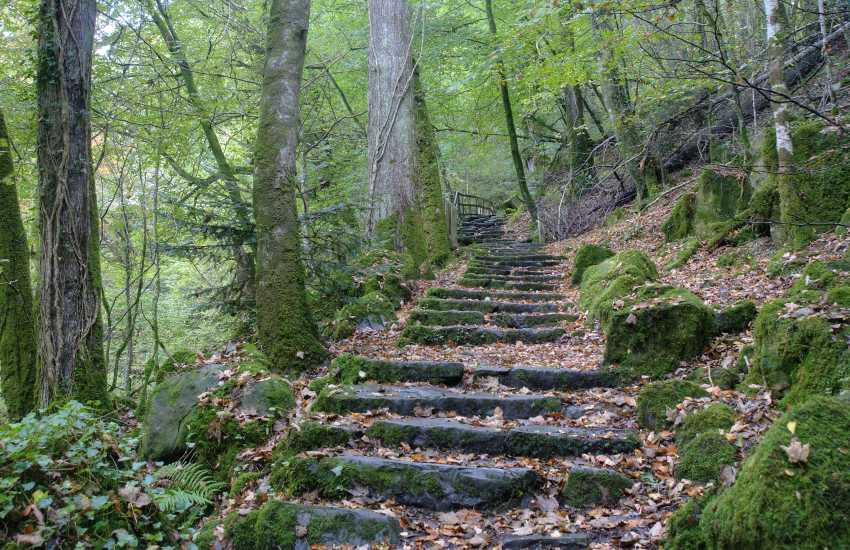 Torrent walk near Dolgellau is a beautiful walk down the side of a wooded gorge, and back up the other side