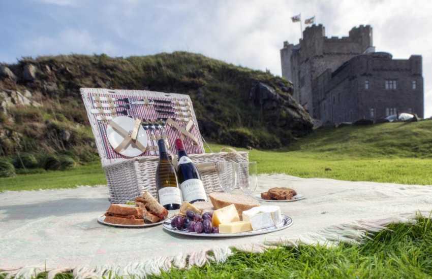 Picnic on the lawn Roch Castle
