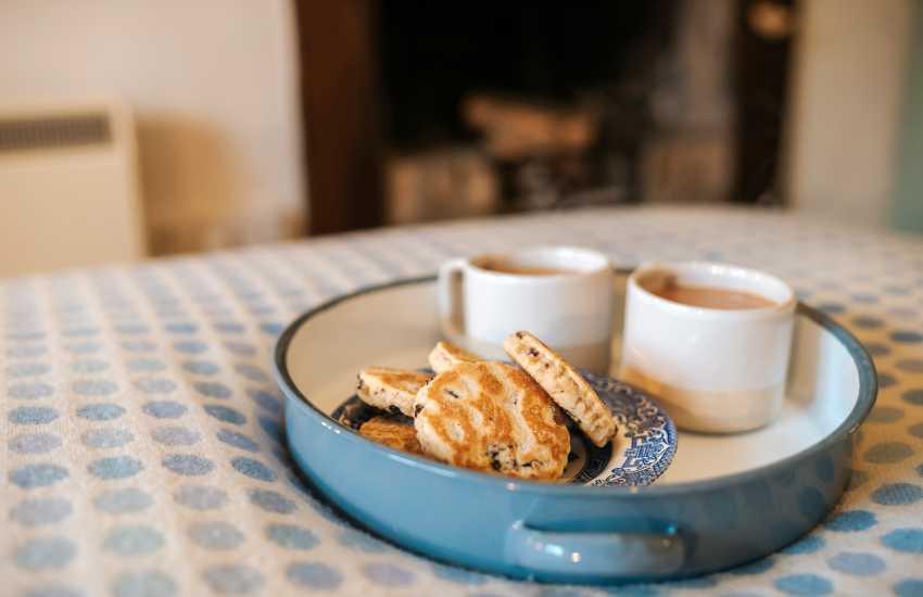 Llangadog cottage holiday - tea and cake