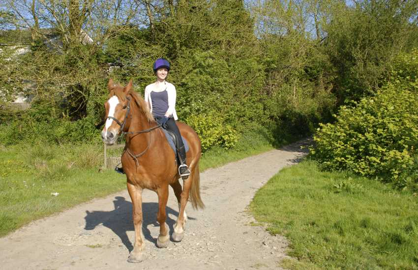 Family run Marros Riding Centre cater for all levels of riders - enjoy an exhilarating beach ride, woodland hack and even 'Own a Pony' for the day