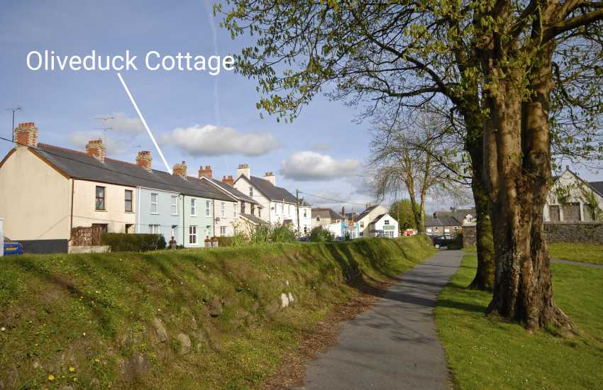 Narberth Moor holiday cottage - dog friendly